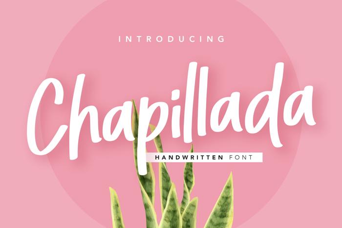 Chapillada Font poster