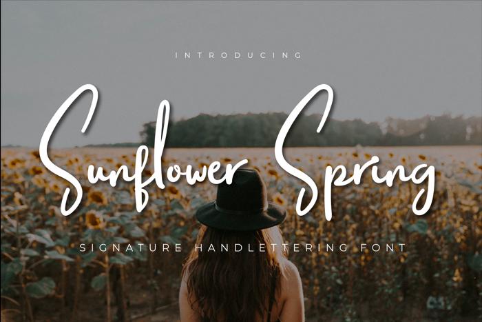 Sunflower Spring Font poster