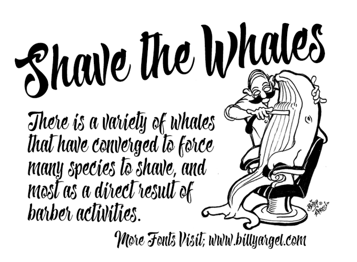 Shave the Whales Font poster
