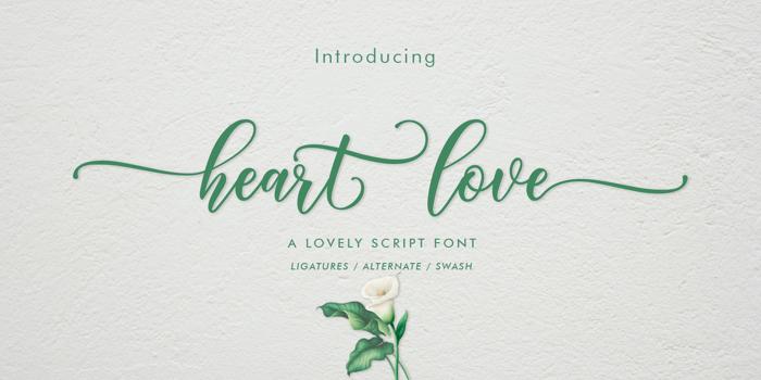 heart love Font poster