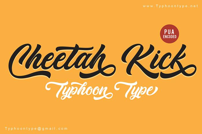 Cheetah Kick Font poster