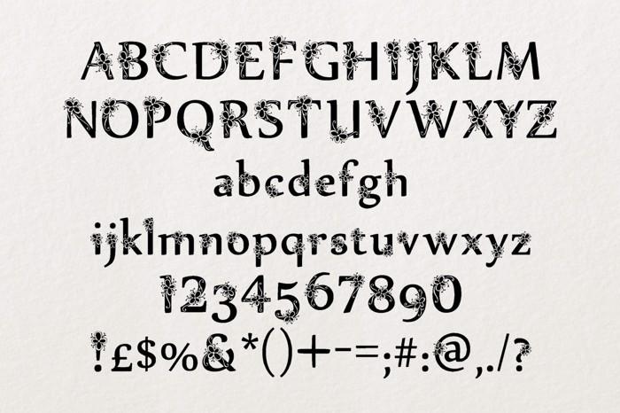 Sylabus Font poster