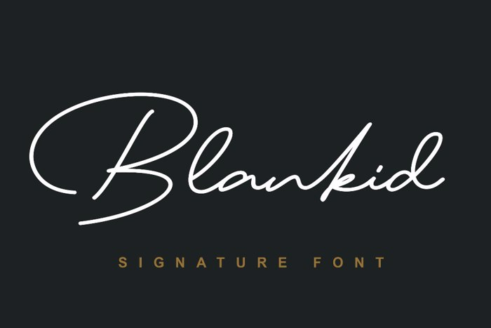 Blankid Font poster