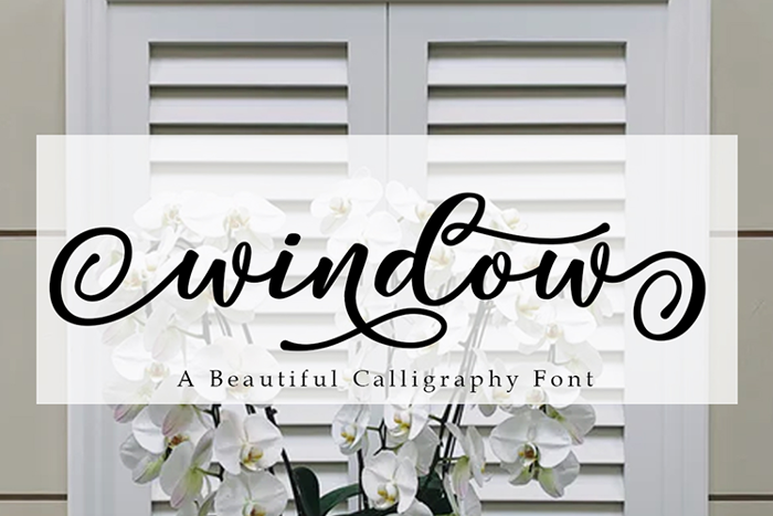 Window Font poster