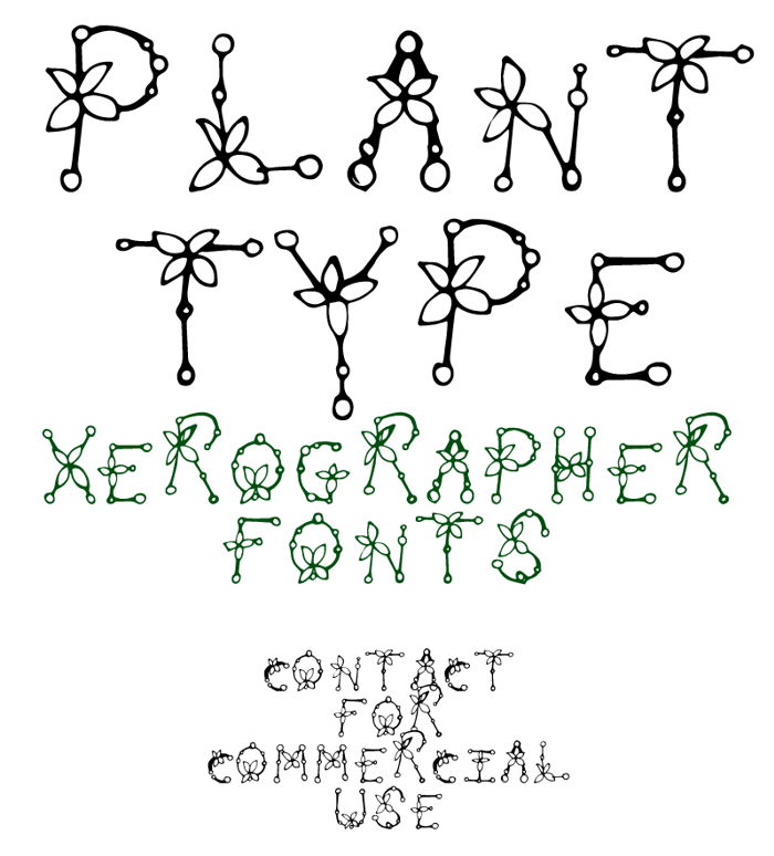 Plant Type Font poster