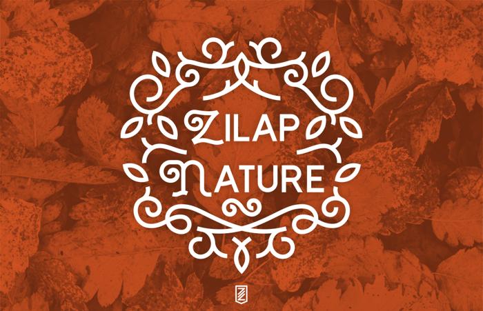 Zilap Nature Font poster