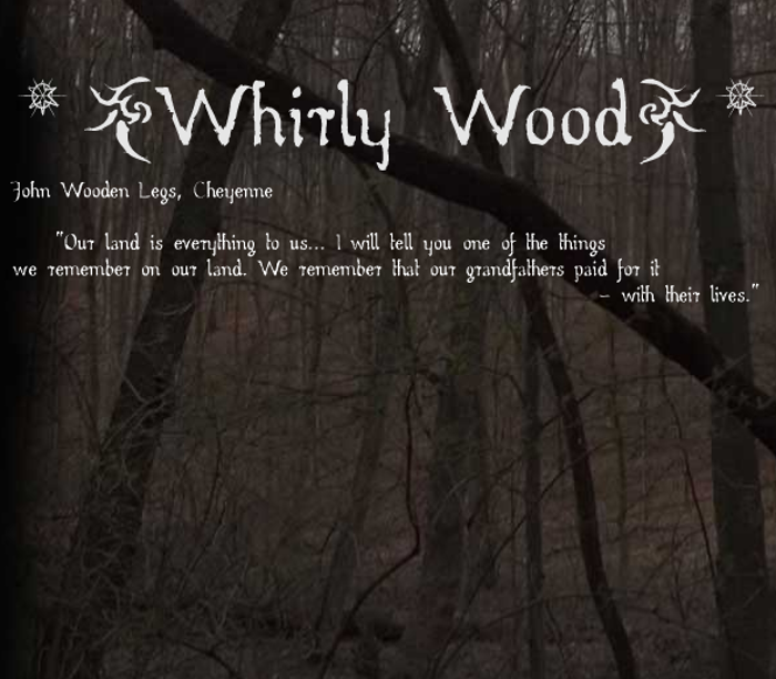 Whirly Wood Font poster