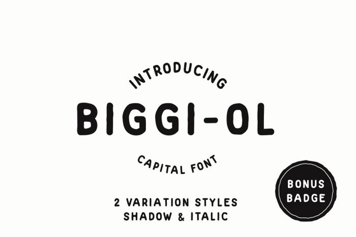 Biggi Ol Font poster