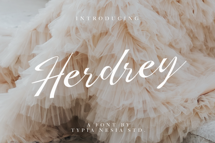 Herdrey Font nature typography