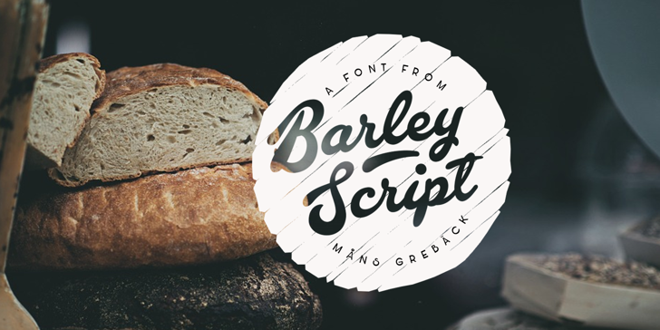 Barley Script PERSONAL USE Font text typography