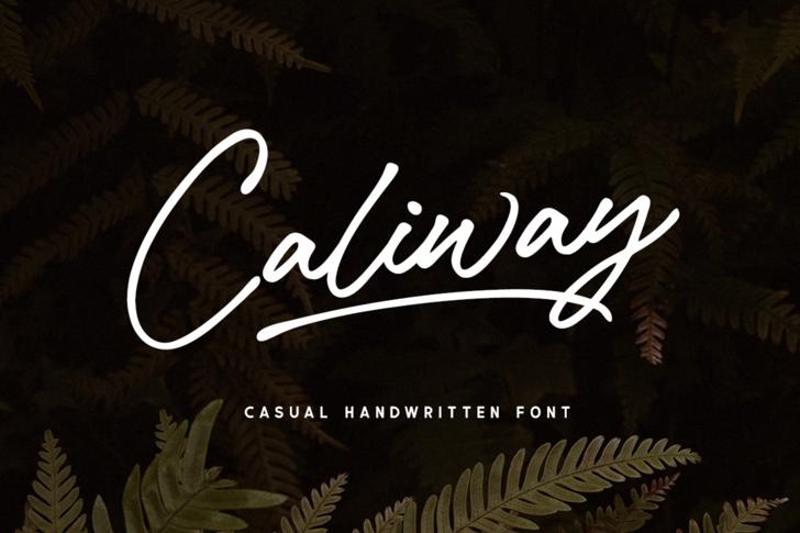 Caliway Font poster