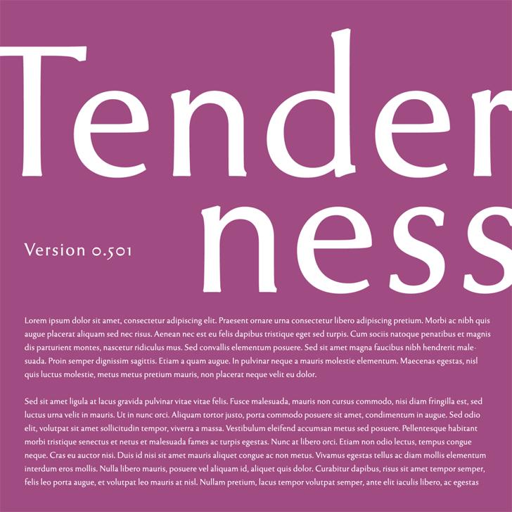 Tenderness Font poster design