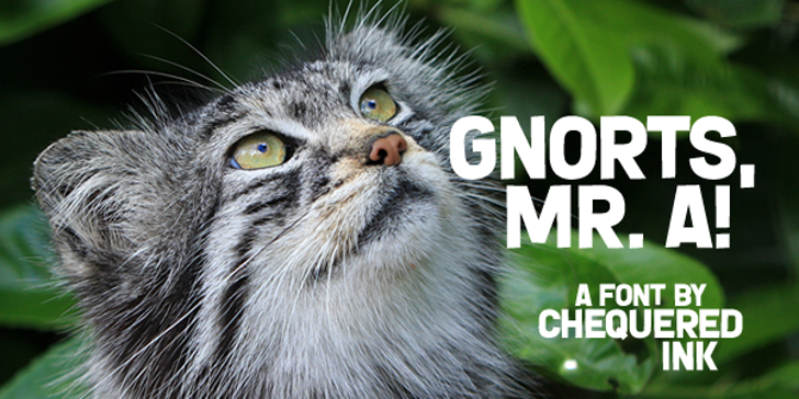 Gnorts, Mr A! Font cat animal