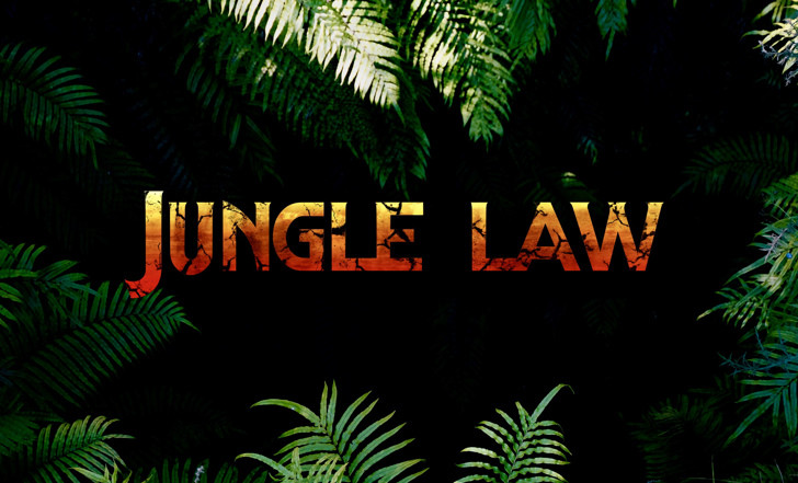 junglelaw Font poster