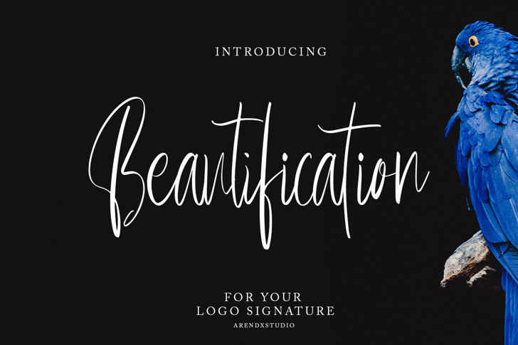 Beautification Font poster