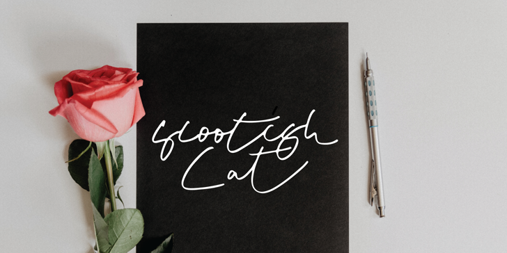 Scootish Font poster