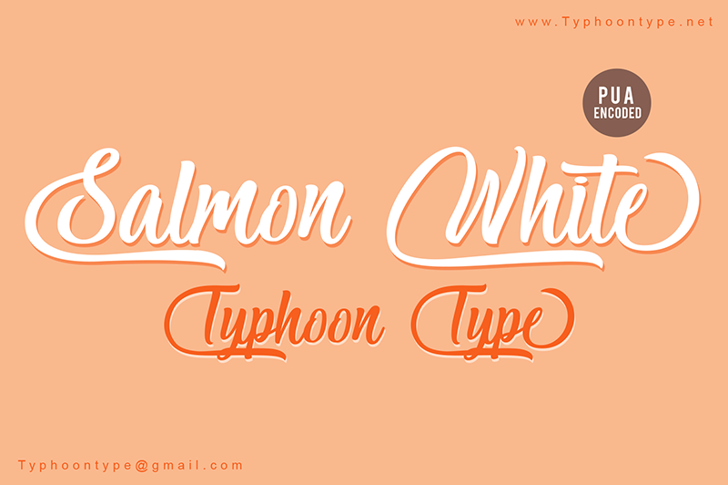 Salmon White - Personal Use Font design