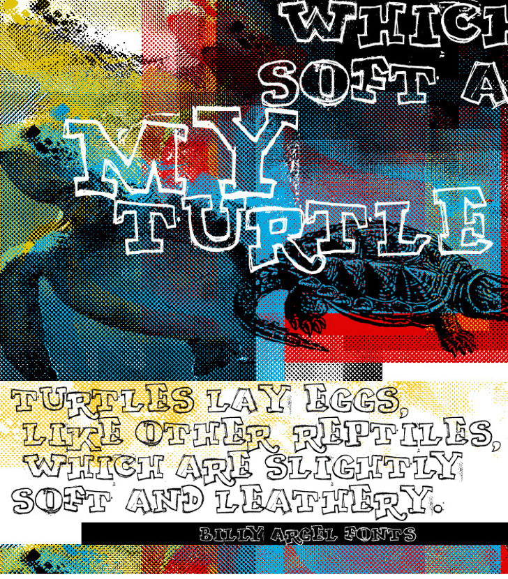 MY TURTLE Font text poster