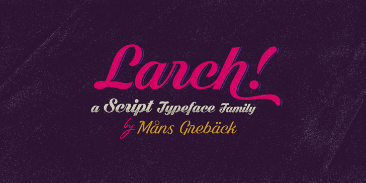Dark Larch PERSONAL USE ONLY Font design book