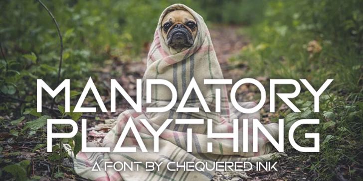 Mandatory Plaything Font poster