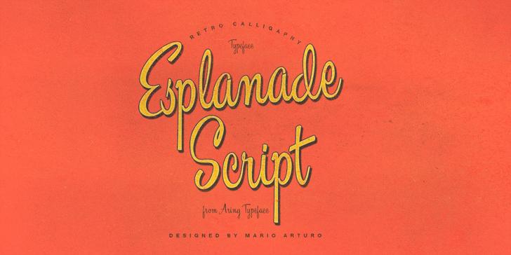 Esplanade Script PERSONAL USE Font design poster
