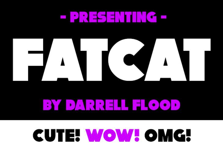 Fatcat Font screenshot design