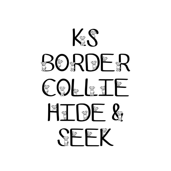 Ks Border Collie Hide N Seek Font