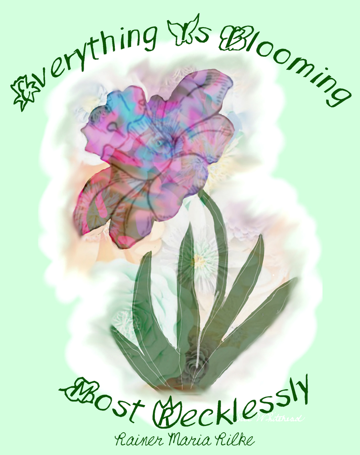 Spring UP Font flower drawing