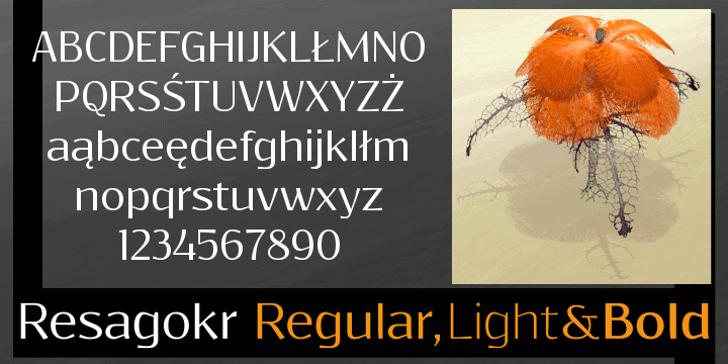 Resagokr Font design text
