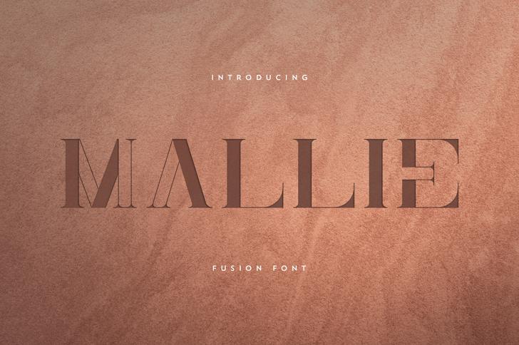 Mallie Font poster