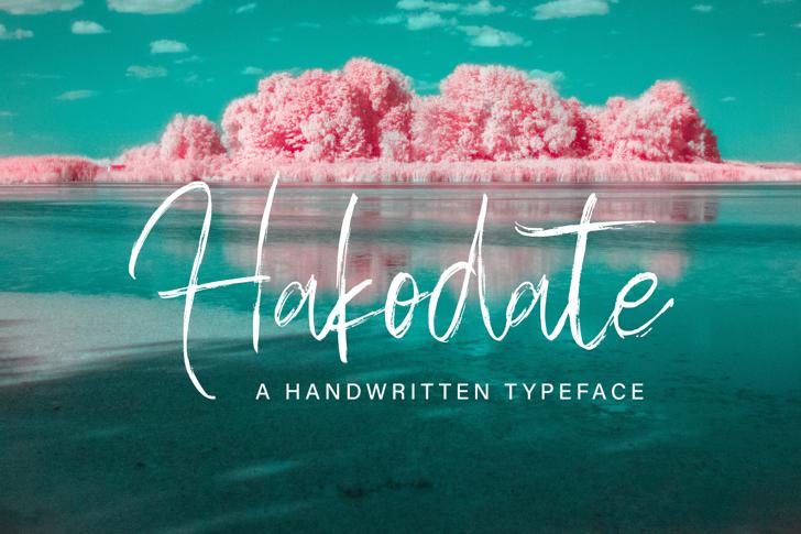 Hakodate Font poster