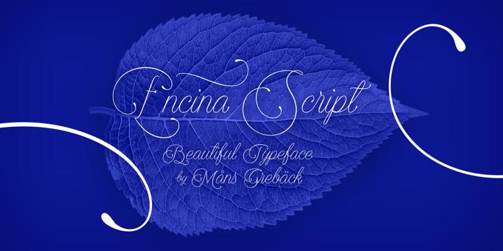 Encina Script 1 PERSONAL USE Font handwriting design