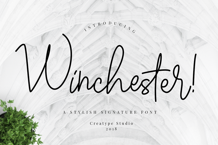 Winchester Font handwriting design