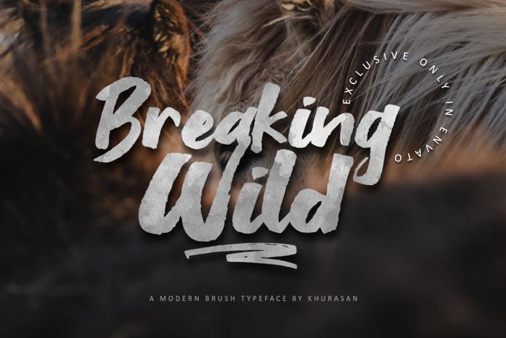 Breaking Wild Font poster