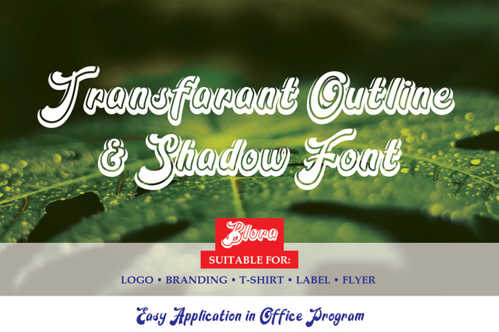 Blora Shadow Font poster