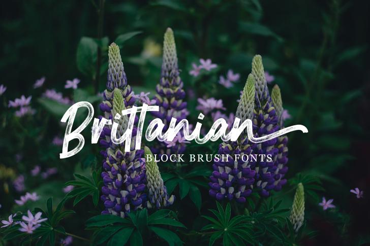 Brittanian Font poster