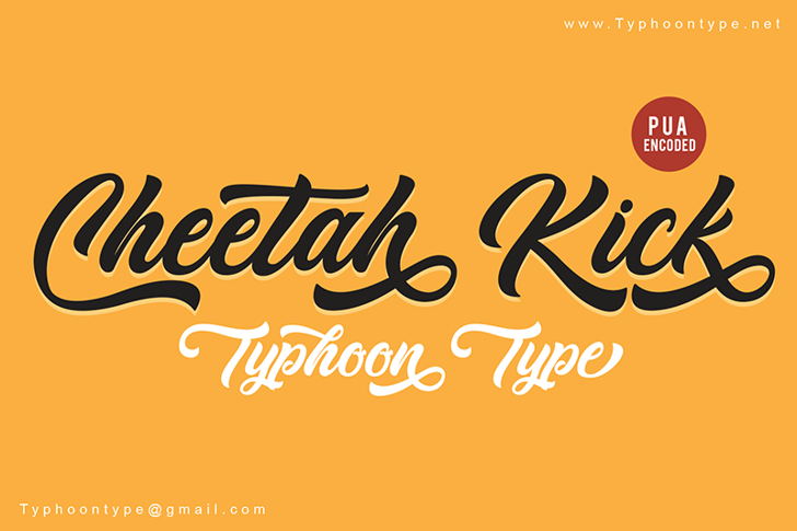 Cheetah Kick - Personal Use Font design typography