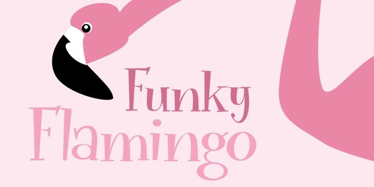 Funky Flamingo DEMO Font design graphic