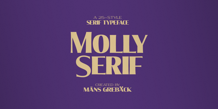 Molly Serif C PERSONAL Font poster