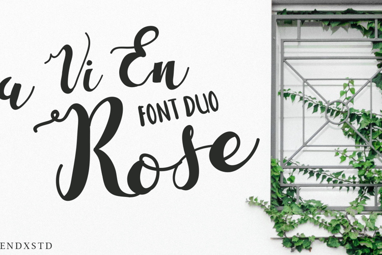 La Vi En Rose Font