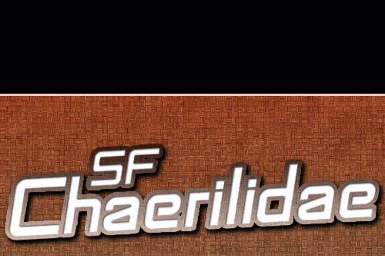SF Chaerilidae Font