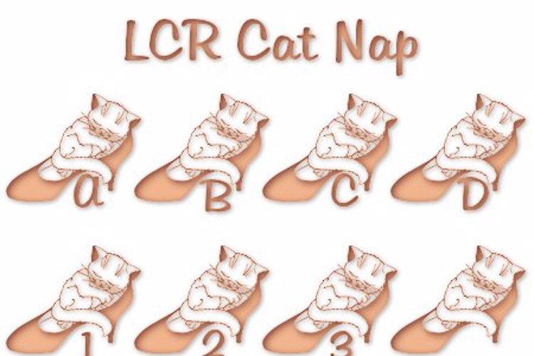 LCR Cat Nap Font