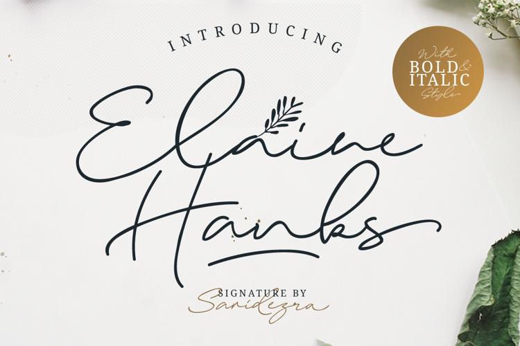 Elaine Hanks Font