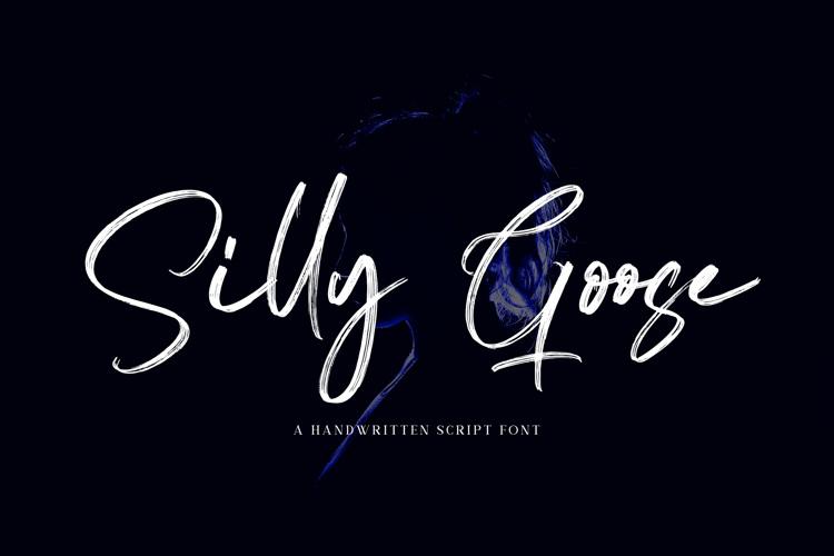 Silly Goose - Handwritten Font