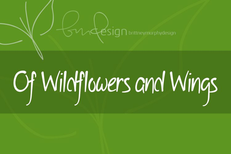Of Wildflowers and Wings Font