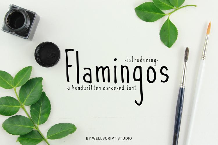 Flamingos Font