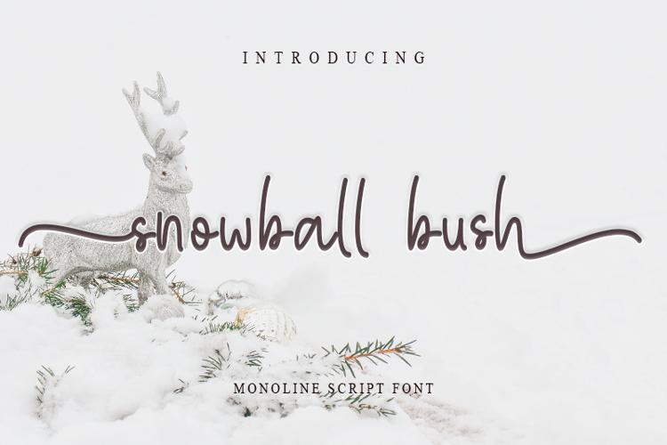 snowball bush Font