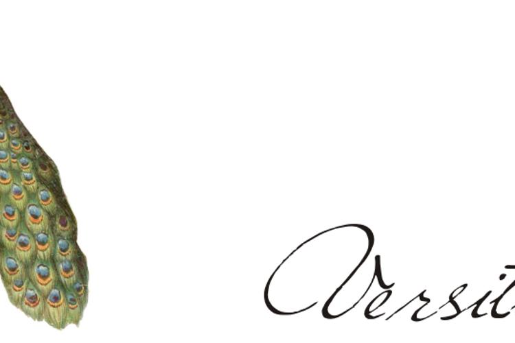Versitia Font
