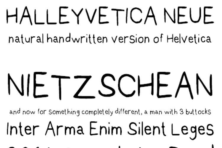 Halleyvetica Neue NBP Font
