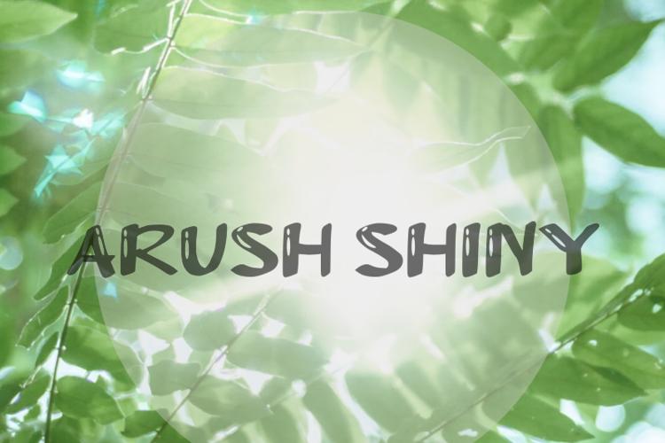 a Arush Shiny Font